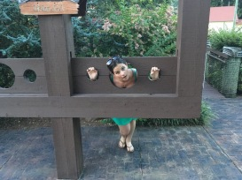 Dana in the Stocks
